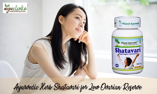 Ayurvedic Herb Shatavari for Low Ovarian Reserve