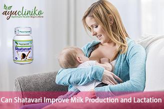 Shatavari to Improve Milk Production